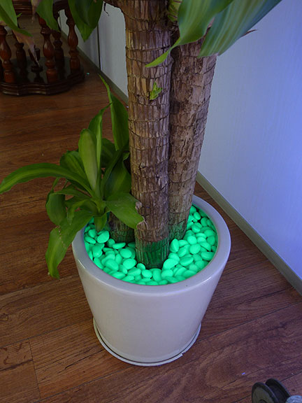 Eco Friendly Pebble Lighting Requires No Electricity