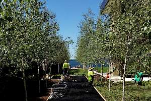 Installing Solepave Pathway using our CORE gravel 50-35