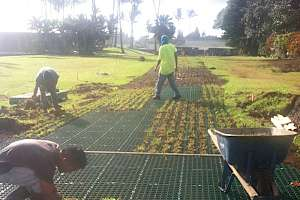 CORE Grass installation @ travaasa hana, Maui - Fire access lane